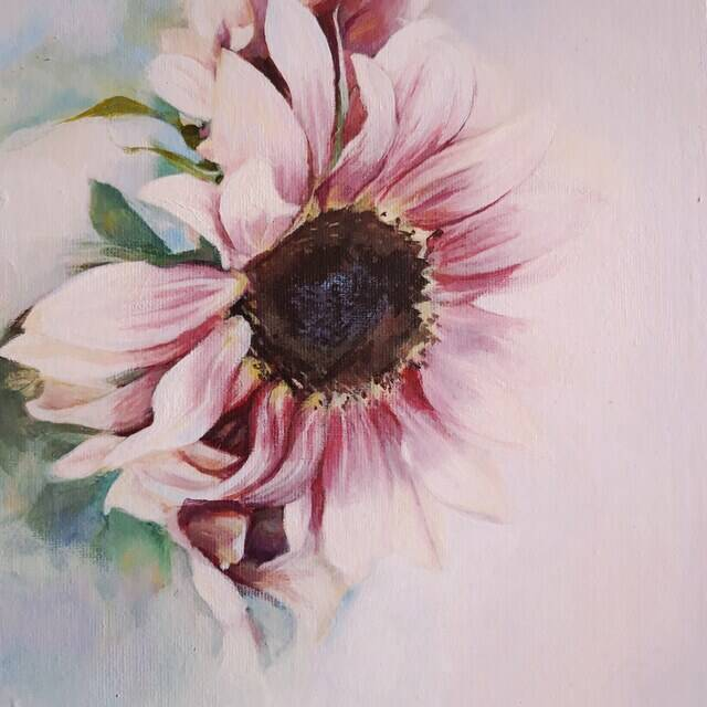 """Picture of """"Helianthus"""""""