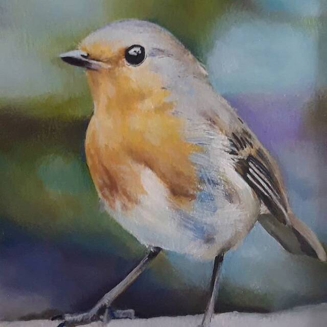 """Picture of """"Robin"""""""